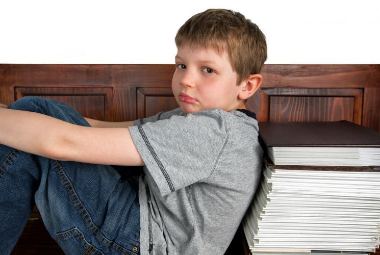 Преимущества готовых домашних заданий